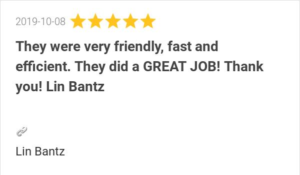 Lin_Bantz_Review