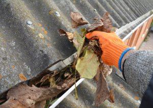 Bigstock Roofer Hand Cleaning Rain Gutt